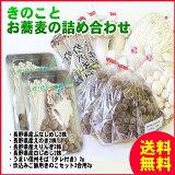 【送料無料】きのことお蕎麦の各2パック詰め合わせ!長野県産きのこと信州そば、炊き込みセット!