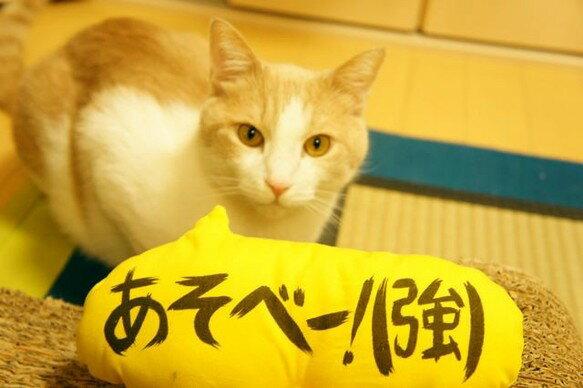 吹き出し猫キッカー (あそべー!)