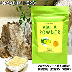 今季入荷分IPMアムラパウダー【100g】スーパーフルーツ飲食用アーマラキー乾燥アムラ粉末【送料無料ポストイン】