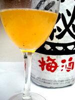 蔵元秘蔵あらごし梅酒1800ml【初雪盃】地元では超有名な秘蔵の梅酒です!