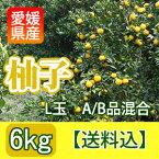 """【送料込】愛媛産の""""A/B級混合生柚子""""[6kg入]"""