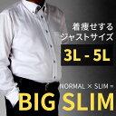 ★大きいサイズのワイシャツ Yシャツ イージーケア ワイシャツ 長袖 ...