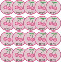 【名入れワッペンさくらんぼ/ピンク20枚】まとめ買い 上履き アイロン 名前 ひらがな カタカナ 漢字 名前 入り ネーム刺繍 タオル