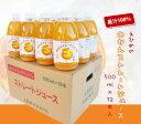 みかんジュース 500ml×12本入 果汁100% ストレートジュース