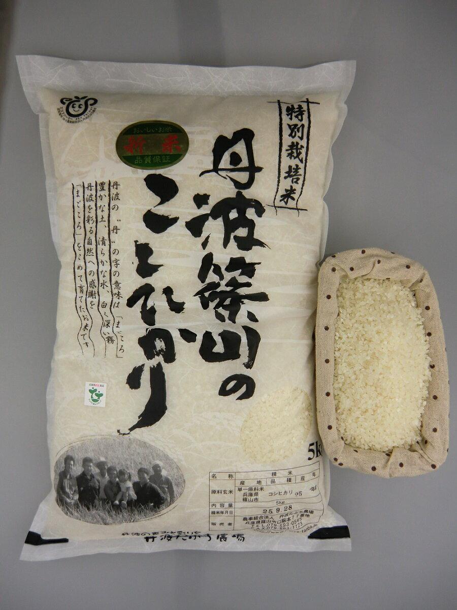 米・雑穀, 白米 305kg