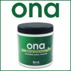 ONA Apple Crumble Block 170g クチコミで大人気の不快なにおいを消臭する臭気中和剤(ソリッドワックス)