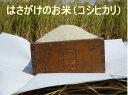 伊那谷・宮下さんの天日干し コシヒカリ 5kg【発送10月中〜12月中...