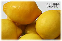 【2011年完売】【送料無料】【わけあり】瀬戸田の有機JAS基準栽培レモン5kg(約50個)【発送12月〜7月下旬】