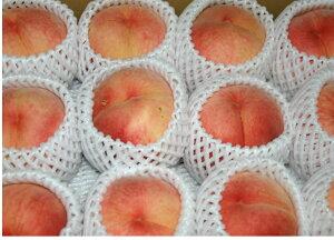 【2013年完売】夜間瀬の果物には勝てない! 北志賀高原の雪解け水の恵み低農薬有機肥料による...