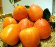 【大特価】【ご家庭用簡易梱包】山梨の干し柿用・百目柿(ころがき)2kg(6〜8個) 【発送11月上旬頃〜11月中旬頃 無くなり次第に販売終了いたします】