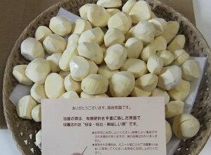 【送料無料】 栗ご飯、甘露煮、きんとんにすぐ使えるナイフで一つ一つ剥きます茨城友部の農薬不...
