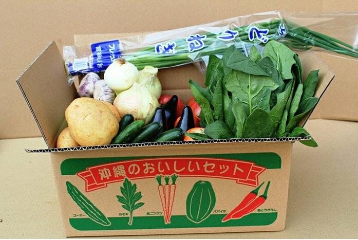 【送料無料】安心・楽しい玉手箱沖縄産・野菜セット(9種類)05P06Aug16