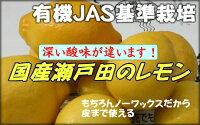 【わけあり】人気沸騰!瀬戸田の有機肥料栽培レモン5kg(約50個)【お買い物マラソン06訳あり】【お買い物マラソン06セール】