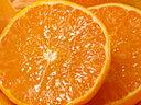 愛媛県 柑橘 産地直送 減農薬栽培 森さん達のご家庭用 せとか 約4kg(約13〜16個)【発送時期:2月下旬頃〜3月中旬頃】