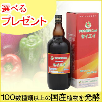 Daiwa enzyme seiei (1200 ml)