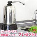 【送料無料】【除塩素シャワーとロングスパウト(25cm)をプ...
