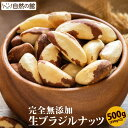 ブラジルナッツ 生 500g (250g×2) 送料無料 無塩 無添加 保存に便利なチャック付き [ ナッツ おつまみ おやつ お試しサイズ 自然の館 ] 保存食 非常食 訳あり