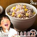 未来雑穀21+マンナン 3kg(500g×6) 完全 国産 ...