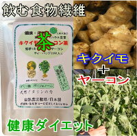 40ae46ac0e019  送料無料  菊芋 キクイモ きくいも茶 ヤーコン茶 3g×30ティーバッグ