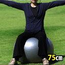 75cm玉Gボール バランスボール ダイエット【空気入れ付属】 【RCP】