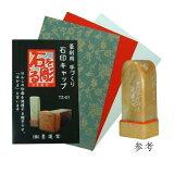 27519 篆刻用 石印キャップ TZ-01 【メール便対応】