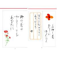 日本習字普及協会筆ペンで書く短い手紙A5判128頁【メール便対応】(810190)