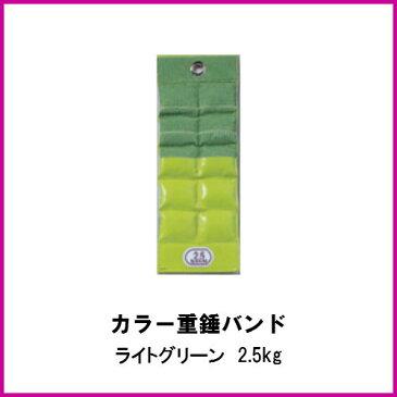 酒井医療 カラー重錘バンド ライトグリーン 2.5kg