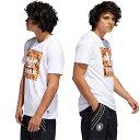 【即納】アディダス スケートボーディング adidas Originals メンズ Tシャツ EVISEN BB FL エビセン スケートボーディング コラボ ホワイト (FUE77/DU8356 SS19)【メール便可】