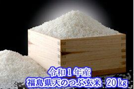 福島県産天のつぶ玄米