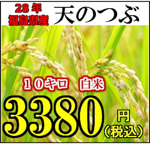 28年産 福島県オリジナル品種~福島県産天のつぶ10キロ