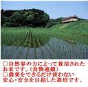 (産地直送)令和元年度産 山形県産 竹田さんの雪若丸 玄米 1袋 20kg  3