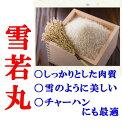(産地直送)令和元年度産 山形県産 竹田さんの雪若丸 玄米 1袋 20kg  2