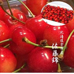 北海道余市産「露地栽培 さくらんぼ」L寸以上900gバラ詰め※佐藤錦か紅秀峰になります