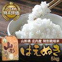 【送料無料】【山形県庄内産】特別栽培米 はえぬき5kg【smtb-k】【kb】
