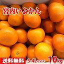 【送料無料】愛媛県産 宮内いよかん 秀 3〜4Lサイズ 9kg
