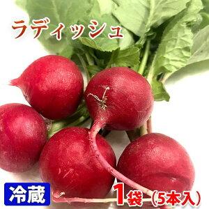愛知県産 ラディッシュ 5本...