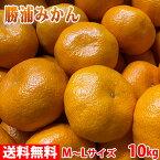 【送料無料】徳島県産 勝浦みかん(晩生みかん・十万) Mサイズ 10kg