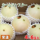 熊本県産 メロン ホームランスター 4〜6玉入り 約5kg(1箱)