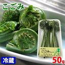 秋田県産 こごみ 1パック50g(5〜6本入り)