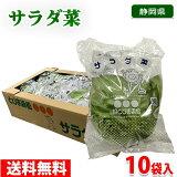 【送料無料】静岡県産 サラダ菜 1袋(80g)×10袋入り(1箱)