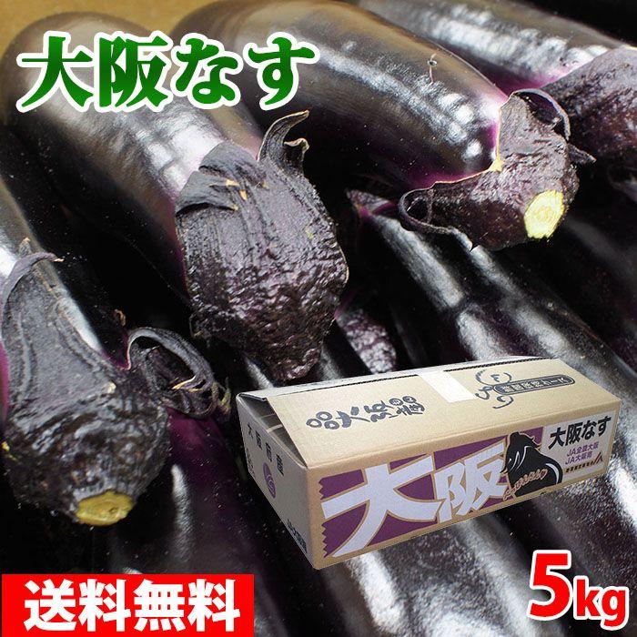 野菜・きのこ, ナス  L 5kg40