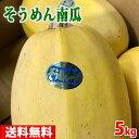 【送料無料】岡山県産 そうめん南瓜 5kg(3〜4玉入)