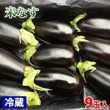 高知県産 米なす(べいなす) Mサイズ 2.5kg(9玉入)