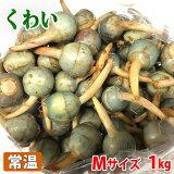 広島県産 くわい(クワイ・慈姑) 秀品 Mサイズ 1kg