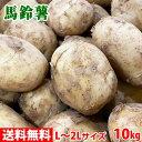 【送料無料】 長崎県産 馬鈴薯(ばれいしょ) A等級 L〜2Lサイズ 10kg