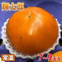 鳥取県産 柿 輝太郎(きたろう)7〜9玉入り 約3kg