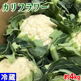 徳島県産 カリフラワー 約4kg 8株入り(箱)