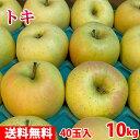 【送料無料】 青森県産 りんご トキ 40玉入 10kg