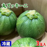 宮崎県産 丸ズッキーニ 3玉入り (箱)