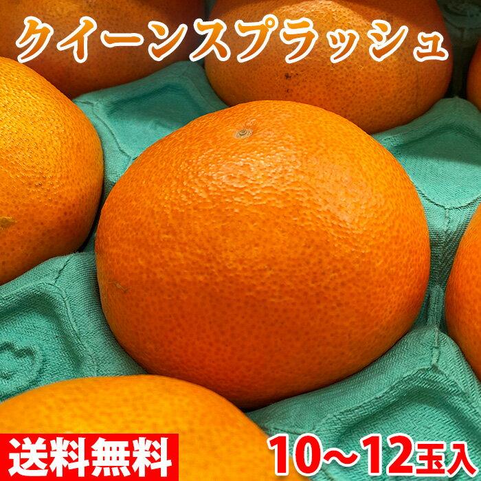 https://thumbnail.image.rakuten.co.jp/@0_mall/shokuhin-chokusou/cabinet/product18/r11610652.jpg